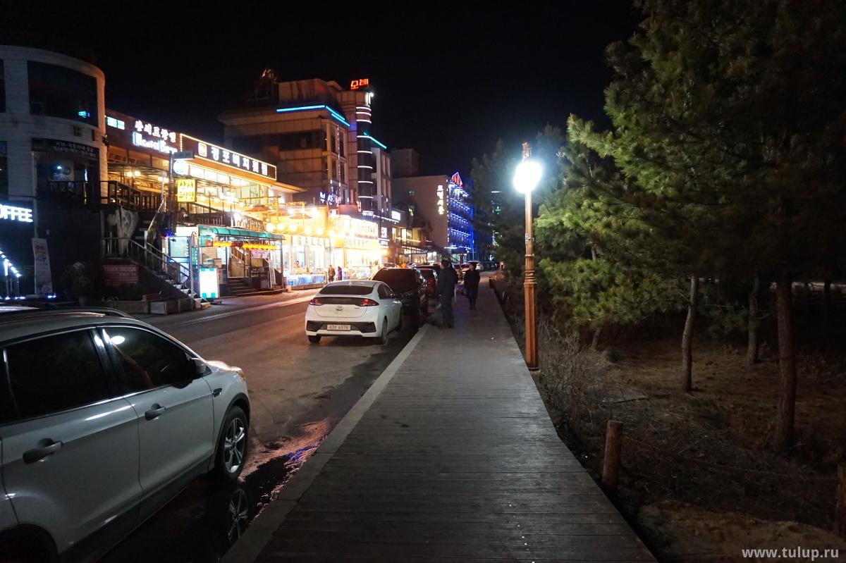 Каннын — город елей и морепродуктов. Морепродукты слева, ели и слева и справа.