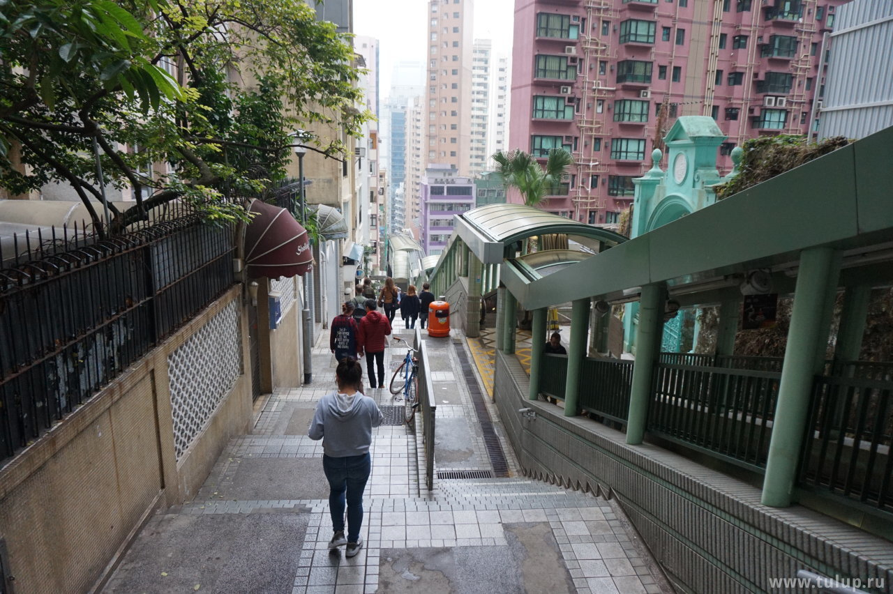 Эскалаторы с набережной тянутся до самого подножия горы Тайпиншань (太平山 — Пик Виктория)