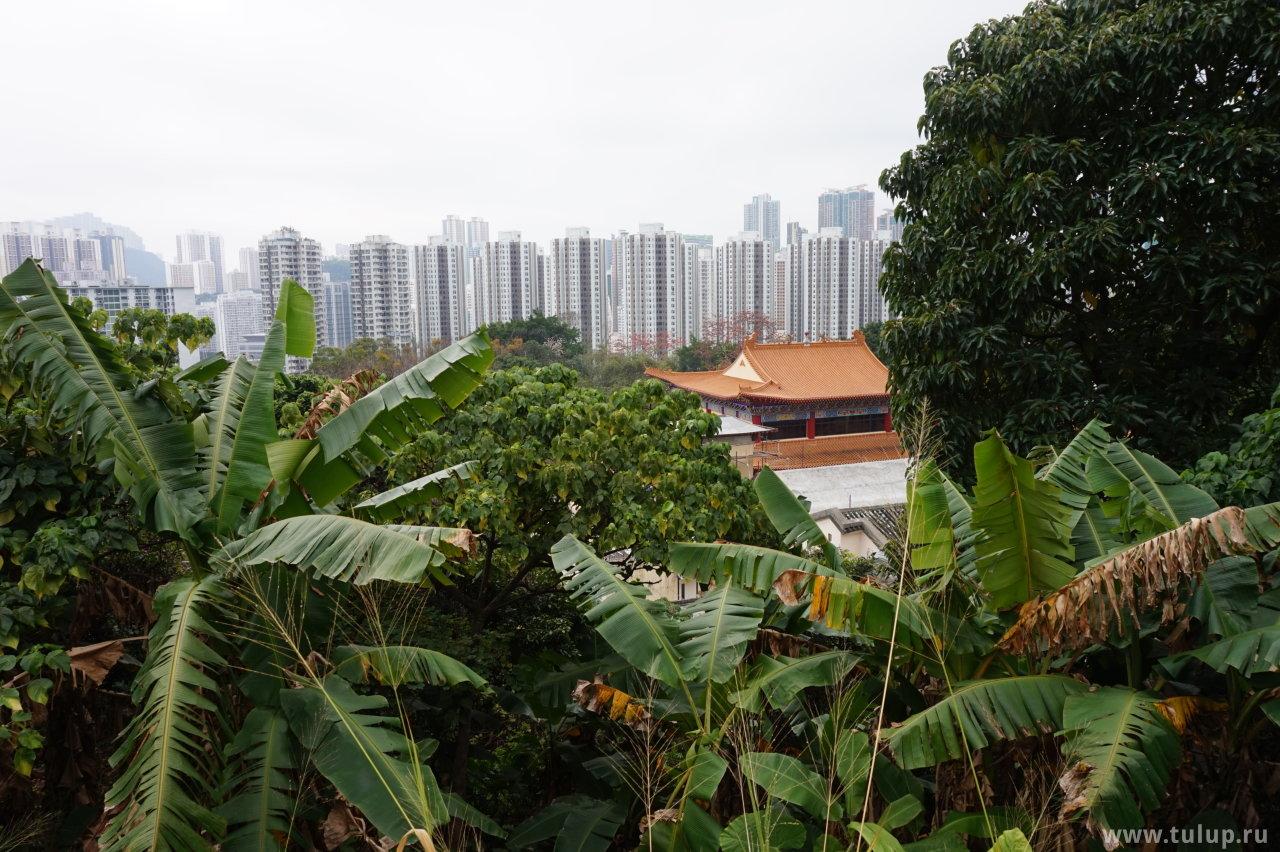 Спальные районы северного Гонконга вдали