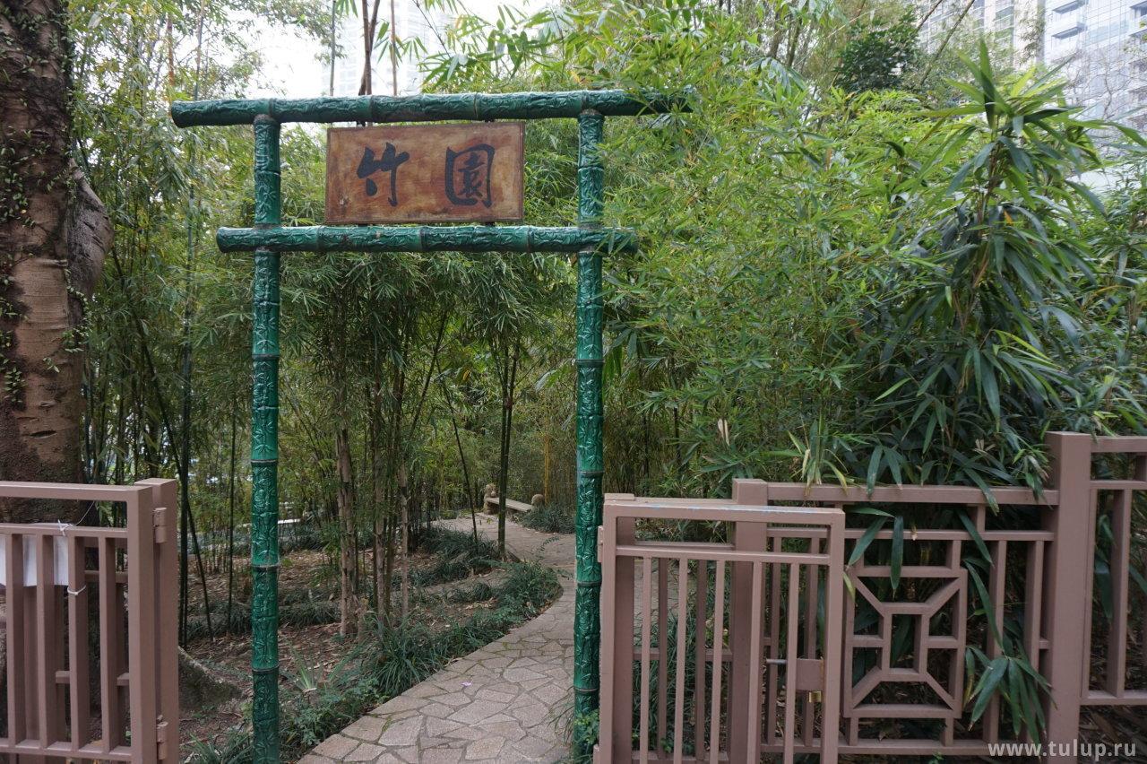 Чжуюань — бамбуковый сад