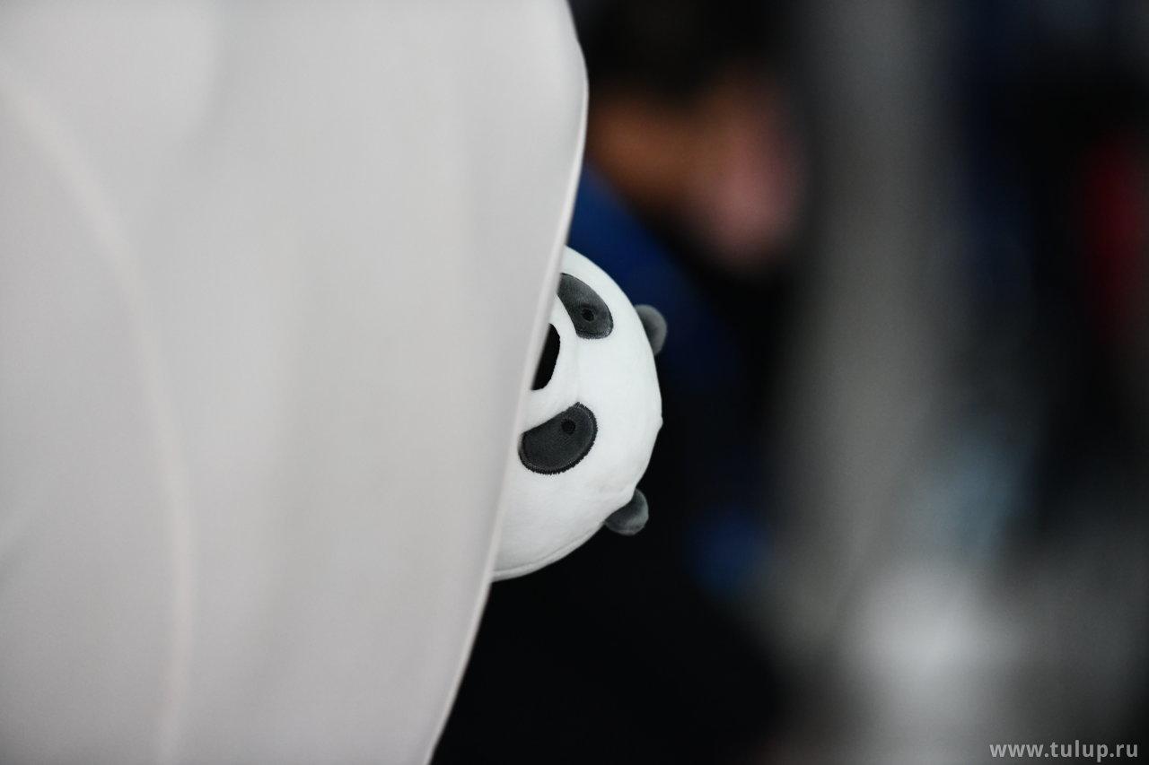 Панда выглядывает из-за спины Гийома