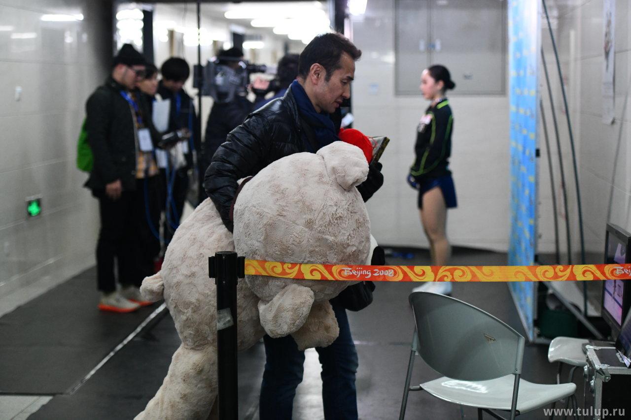 Медведь с тренером изучают оценки на фоне Вакабы