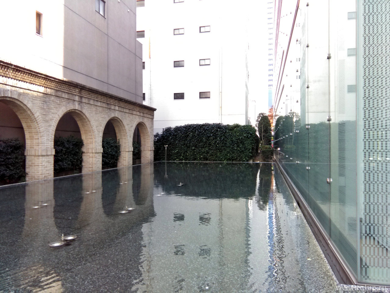 Двор института финансов